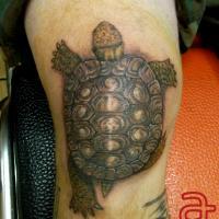 Turtle tattoo by Dr.Ink - Atkatattoo - Phnom Penh - Cambodia